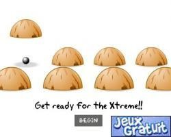 Xtreme Shell Game